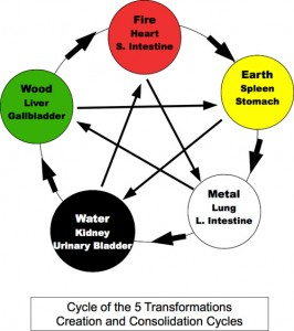 Creation_Control cycle
