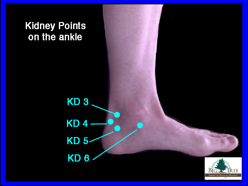 Kidney acupressure points 3, 4, 5, 6