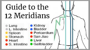 learn 12 meridians online